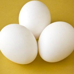 Three Eggs Any Style