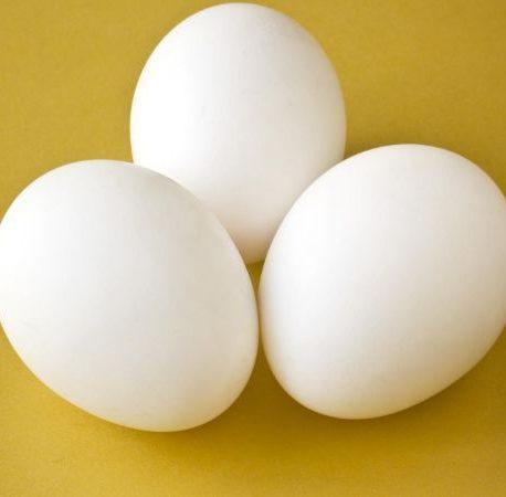 attachment-http://sugarbun.nyc/wp-content/uploads/2021/02/Eggs_CNNPH-458x450.jpg